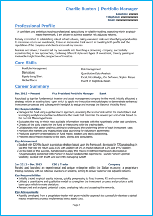 nvestment banking CV example