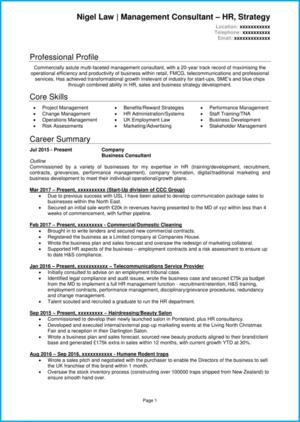 Management consultant CV example