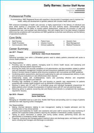 Nurse CV example