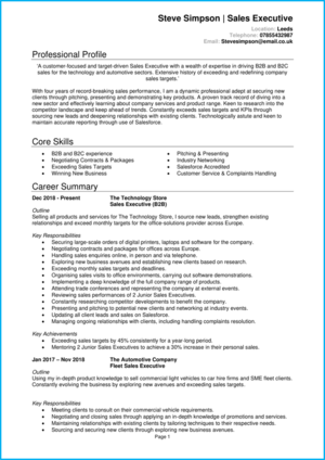 Sales executive CV example