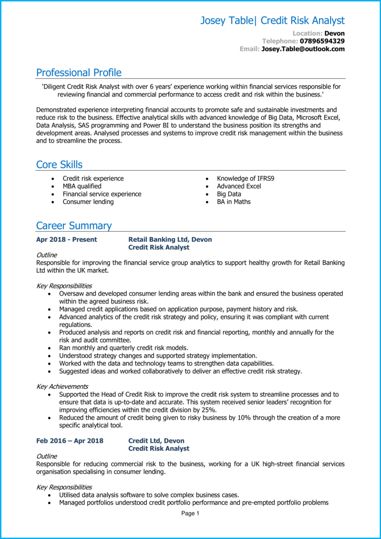 Credit Risk Analyst CV 1