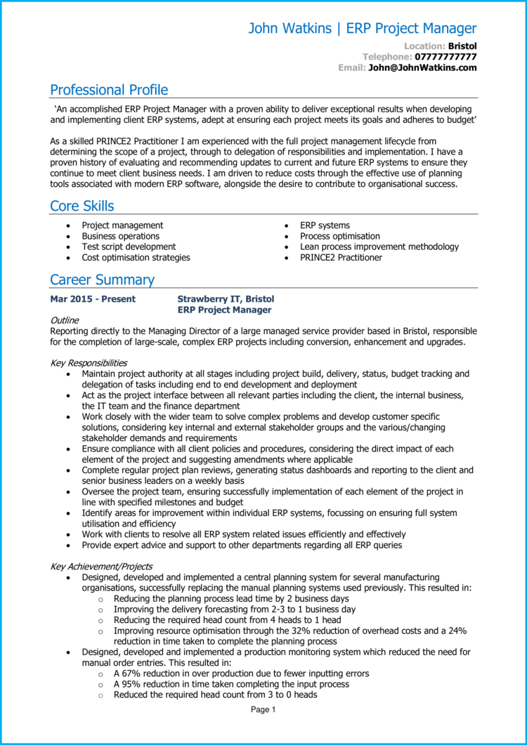 ERP Project Manager CV 1